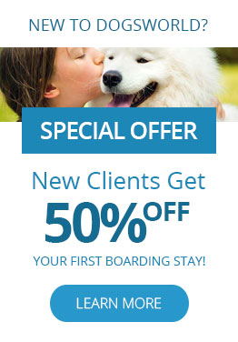 New clients get 50% off their first boarding visit!