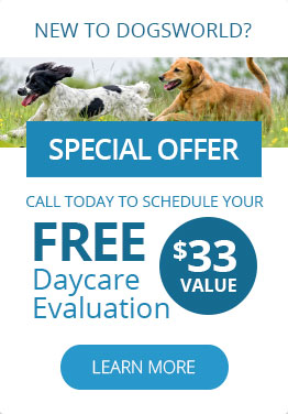 New clients get a free daycare evaluation!