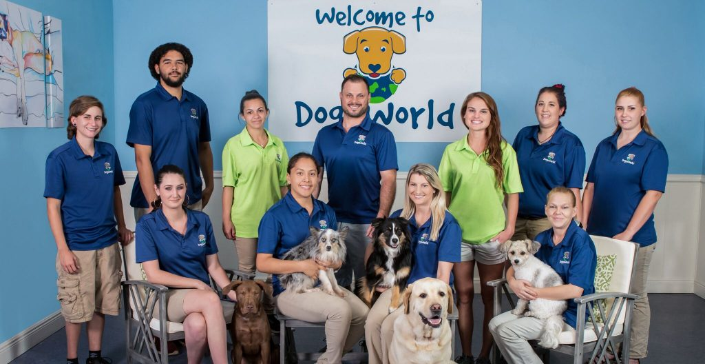 DogsWorld Staff