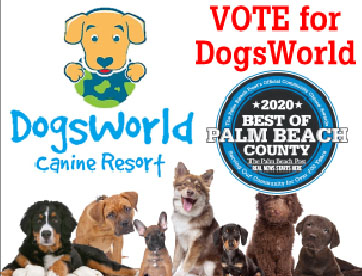 Vote for Best of Palm Beach